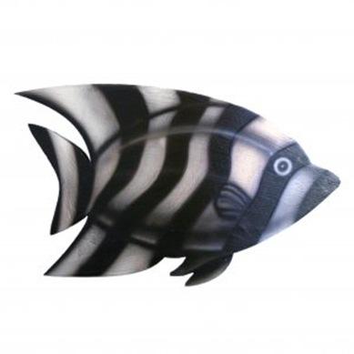 zebra_fish_64