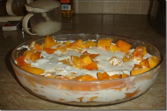 quick mango dessert