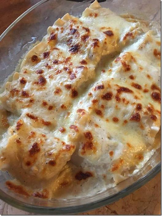 Alfredo lasagna rolls