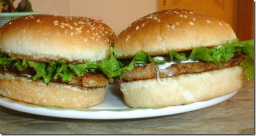 hot-and-spicy-chicken-burger